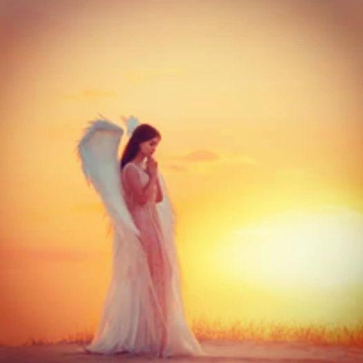 Angelic Divine Update Aug 2